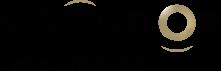 Vision d'Or Logo
