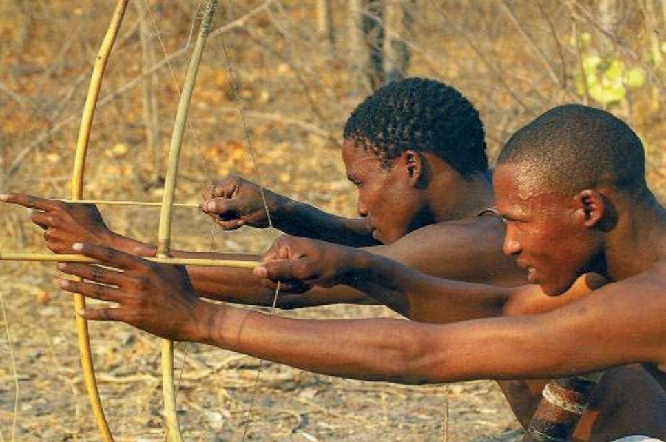 Êtes-vous chasseur ou gardien ? L'histoire d'un peuple ancestral appliquée à nos organisations.